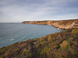 The Coastline of Brittany on Cap Frehel  Cote D'Emeraude (Emerald Coast)  Brittany  France  Europe