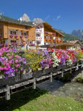 Bridge and Flowers  Pozza di Fassa  Fassa Valley  Trentino-Alto Adige/South Tyrol  Italy