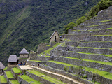 Agricultural Terraces   Machu Picchu  Peru  Lost City of Inca Rediscovered by Hiram Bingham in 1911