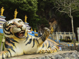 Tiger Statue  Tiger Cave Temple (Wat Tham Suea)  Krabi Province  Thailand  Southeast Asia  Asia