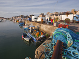 Looking Down the Harbour at Saint Vaast La Hougue  Cotentin Peninsula  Normandy  France  Europe