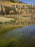 Silver Lake in the Fall  Wasatch-Cache National Forest  Utah  USA  North America