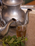 Making Mint Tea at Mohamed Attai Village in the Atlas Mountains  Morocco  North Africa  Africa