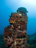 Ladder on Wreck of Lesleen M Freighter  Sunk in 1985 in Anse Cochon Bay  St Lucia