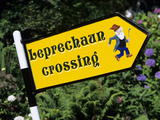 Leprechaun Crossing Signpost  County Kerry  Munster  Republic of Ireland  Europe
