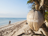Gili Trawangan Written on a Coconut  Gili Islands  Indonesia  Southeast Asia  Asia