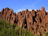 Red Rock Formations in the Canon del Inca  Tupiza Chichas Range  Andes  Southwestern Bolivia