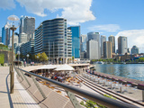 Sydney City Centre and Circular Quay at Sydney Harbour  Sydney  New South Wales  Australia  Pacific