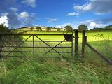 Old Railway Gate  Exe Valley  Devon  England  United Kingdom  Europe