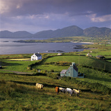 View over Allihies and Ballydonegan Bay  Beara Peninsula  County Cork  Munster  Republic of Ireland