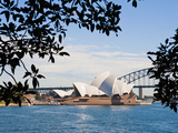 Sydney Opera House  UNESCO World Heritage Site  from Sydney Botanic Gardens  Sydney  Australia