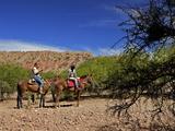 Horse Riding  Canon del Inca  Tupiza Chichas Range  Bolivia  South America