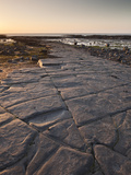The Ledges on Kilve Beach  Somerset  England  United Kingdom  Europe