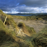 Sand Dunes  Strandhill  County Sligo  Connacht  Repubic of Ireland  Europe