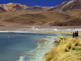 Laguna Canapa  South Lipez  Southwest Highlands  Bolivia  South America