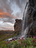 Alpine Waterfall with Wildflowers at Sunset  San Juan National Forest  Colorado  USA  North America