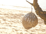 Beach Cafe Written on a Coconut on Gili Trawangan  Gili Isles Archipelago  Indonesia