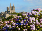 Panorama with Pink and Blue Hydrangeas and Notre Dame Cathedral  Coutances  Cotentin  France
