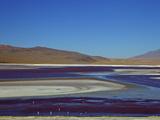 Laguna Colorada (Red Lagoon)  Eduardo Avaroa Andean Fauna Nat'l Reserve  Bolivia