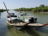 Boats in a Waterway with Mangrove Trees  Irrawaddy Delta  Myanmar (Burma)  Asia
