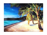 Beach at Magens Bay  St Thomas  USVI - I