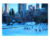 New York City Central Park Winter Ice