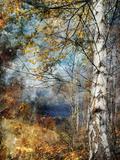 Kootenay Fall Papier Photo par Ursula Abresch
