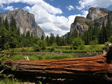 Vallée de Yosemite Reproduction photo par Philippe Sainte-Laudy