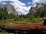 Vallée de Yosemite Papier Photo par Philippe Sainte-Laudy