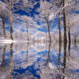 Rêve bleu Papier Photo par Philippe Sainte-Laudy