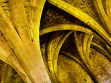 Yellow Arches 3