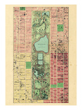 1867  New York City  Central Park Composite  New York  United States