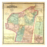 1856  Braintree Wall Map  Massachusetts  United States