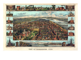 1855  Harrisburg Bird's Eye View  Pennsylvania  United States