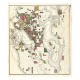 1890  Seattle City and Environs Map  Washington  United States