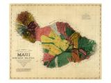 1885  Maui Island Map  Hawaii  United States