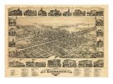 1885  Vineland Bird's Eye View  New Jersey  United States
