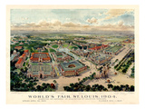 1904  Saint Louis World's Fair Bird's Eye View Unattributed Publisher  Missouri  United