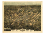 1872, Raleigh Bird's Eye View, North Carolina, United States Giclée