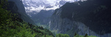 Waterfalls in a Forest  Lauterbrunnen Valley  Wengen  Bernese Oberland  Berne Canton  Switzerland