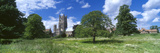 Trees in a Meadow with Church in the Background  Dean's Meadow  Ely Cathedral  Ely  Cambridgeshi