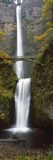 Low Angle View of a Waterfall  Multnomah Falls  Columbia River Gorge  Multnomah County  Oregon  USA