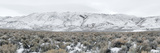 Mountain Range  Black Rock Desert  Nevada  USA
