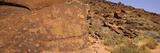 Ancient Rock Carvings  Twyfelfontein  Kunene Region  Namibia