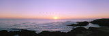 Sunset over the Ocean with Flock of Birds  Mendocino  Mendocino County  California  USA