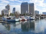 Fishing Boats Docked at a Marina  San Diego  California  USA