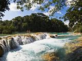 Waterfall  Agua Azul Cascades  Tulija River  Chiapas  Mexico
