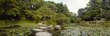 Stepping Stones in a Lake  Naka Shinen  Heian Jingu Shrine  Kyoto Prefecture  Kinki Region  Hons