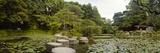 Stepping Stones in a Lake  Naka Shinen  Heian Jingu Shrine  Kyoto Prefecture  Kinki Region  Hons