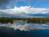 Reflection of Clouds on Water  Everglades National Park  Florida  USA